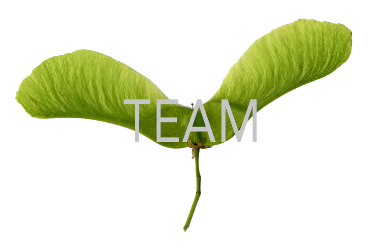 Green Propeller - Team